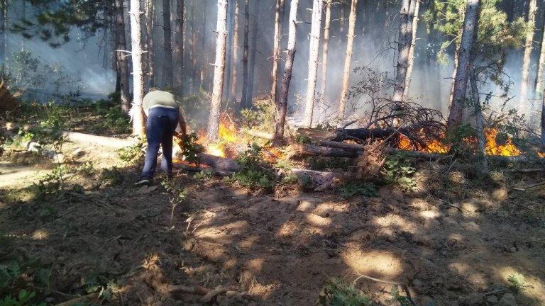 Има вече заподозрян за избухването на огъня