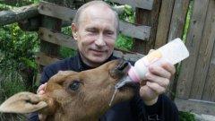 """""""Няма да хапеш, нито да мляскаш"""", предупреди Путин животното."""""""