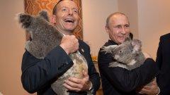 Коалите не съдят Владимир Путин за ситуацията в Украйна