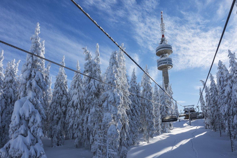 """Климатът в района се отличава с мека зима и много слънчеви дни. Туристическият сезон започва през декември и продължава почти до края на април. Почти всички ски писти в курорта започват от връх Снежанка. Самият връх е измежду 100-те национални туристически обекта на Българския туристически съюз, а печатът за съответната книжка е в хижа """"Студенец""""."""