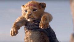 """Сутрешен newscast: Първи кадри от новия """"Цар Лъв"""""""
