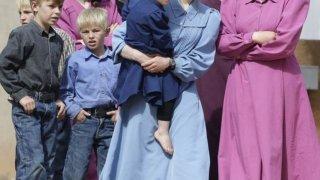 Системната полигамия с необратими последици за здравето