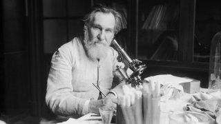 Как една научна презентация предизвика световна мания по киселото мляко