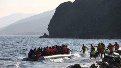 От партитата на Ибиса до плажовете и водите на Гърция, те са дошли, за да спасят умиращите край бреговете доброволно