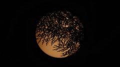 """""""... всичко под слънцето е в хармония, ала Слънцето е затъмнено от Луната"""" - Пинк Флойд , Dark Side Of The Moon"""