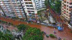 Шокиращи кадри в столицата на Бангладеш - наводненията се смесиха с кръвта на хиляди убити животни за мюсюманския празник Ейд ал-Адха (Курбан Байрам)