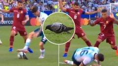 Невиждано: Гълъб отне топката на аржентински национал, Twitter го съсипа от подигравки (видео)