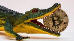 За мнозина биткойните са валута точно както и фиатните пари