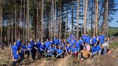 Служители на компанията вече засадиха 500 дръвчета край село Долна Диканя, а това е само началото на мащабна кампания.