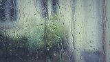 На места валежите ще достигнат до 35-50 л/кв.м.