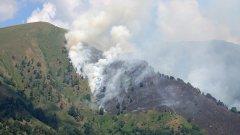 Има места, на които борбата с огъня продължава, но там гори основно трева.