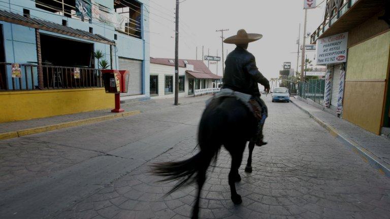 Плаяс де Росарито или просто Росарито е град в мексиканския щат Долна Калифорния. Той е вторият по големина след Тихуана в този район. Заради нощните клубове и просторните плажове той е любимо и предпочитано място от американските младежи за бърз туризъм.