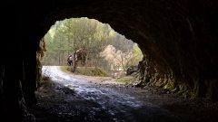 Според статистиките трънската околия е една от най-бързо обезлюдяващите части на България. И макар тук хората да са все по-малко, природни и исторически забележителности има в изобилие. Дали обаче те са достатъчни, за да видят местните светлината в тунела?