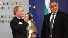 """""""Прави ми големи локви из цялата къща и оставя козина. Но е много добро момче, разбира се, и аз го обичам"""", казва Путин за кучето на Борисов в края на 2010 г., тъкмо когато лично постига българската """"капитулация"""" пред """"Южен поток"""" и удължаването на агонията """"Белене"""""""