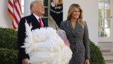 На сайта на президентската институция течеше анкета коя птица да бъде помилвана