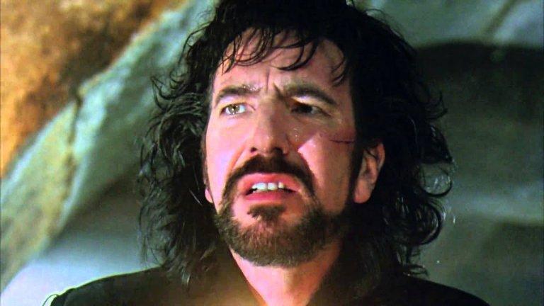 """Няколко години по-късно играе и в """"Робин Худ: Принцът на разбойниците"""", там е Шерифа от Нотингам. Режисьор на лентата е Кевин Рейнолдс, а Рикман си партнира с Кевин Костнър и Морган Фрийман. Той е най-добрият шериф от Нотингам, който сме виждали, след тлъстия вълк от анимацията на Дисни."""