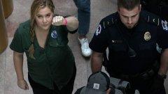 Актрисата Ейми Шумър и моделът Емили Ратайковски са сред задържаните