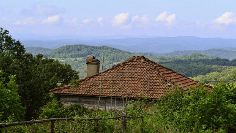 Безбрежното зелено море на Странджа обргъща тази опустяла къща в село Българи.