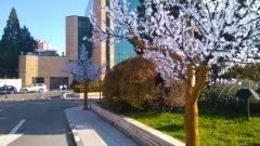 Хотелът на Ветко Арабаджиев спечели обществена поръчка