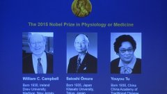 Ирландецът Уилям Кембъл, японецът Сатоши Омура и китайката Юю Ту са тазгодишните носители на Нобелова награда за медицина, съобщи Нобеловият комитет