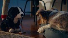 Новото имиджово видео на ИКЕА носи послание за уют и приятелство.