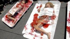 Протест на не-български вегани. Българските протестират не сред изкуствена кръв, а сред зеле, моркови и картофи