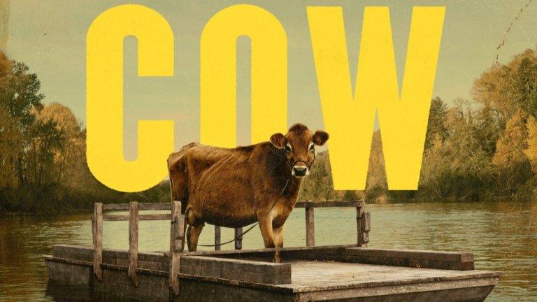 """First Cow Metacritic: 89 Rotten Tomatoes: 96%  Филмът излиза под логото на A24, което е почти сигурна гаранция за качество. First Cow прехвърля зрителите в 1820-а и ги запознава с Отис """"Куки"""" Фиговиц - тих готвач, чиято съдба го сблъсква с китайския имигрант Кинг-Лу. Той се укрива след убийството на руснак, а Куки го скрива в палатката си. Скоро пътищата им се преплитат отново и мечтите им за забогатяване ще ги забъркат в допълнителни неприятности, защото сбъдването на тези цели минава през една чужда крава."""