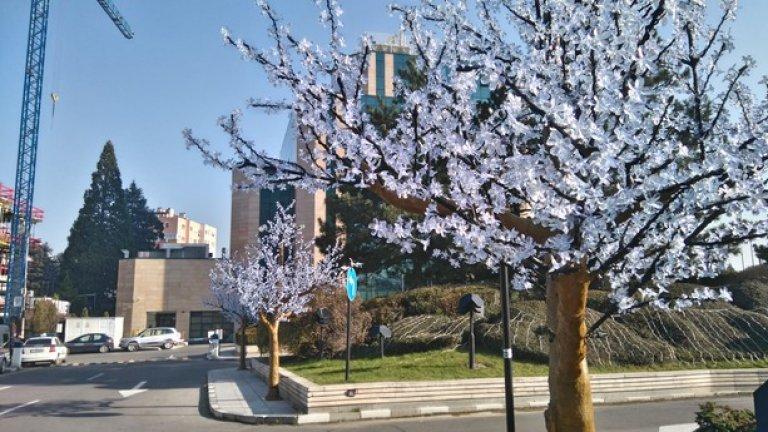 """Въпреки всекидневните проверки на ДНСК от април насам, настрояването на едноетажното тяло към хотел """"Маринела"""" така и не беше спряно."""