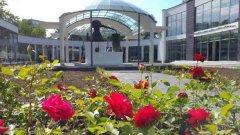 Снимки от откриването на Музея на розата можете да разгледате в галерията