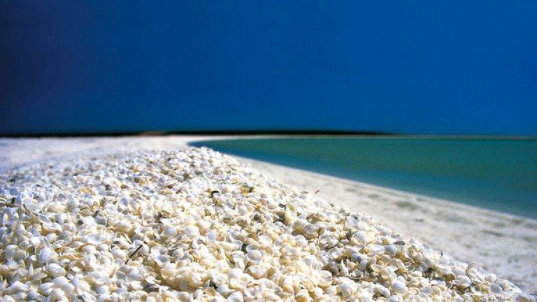 Черупковият плаж в Австралия