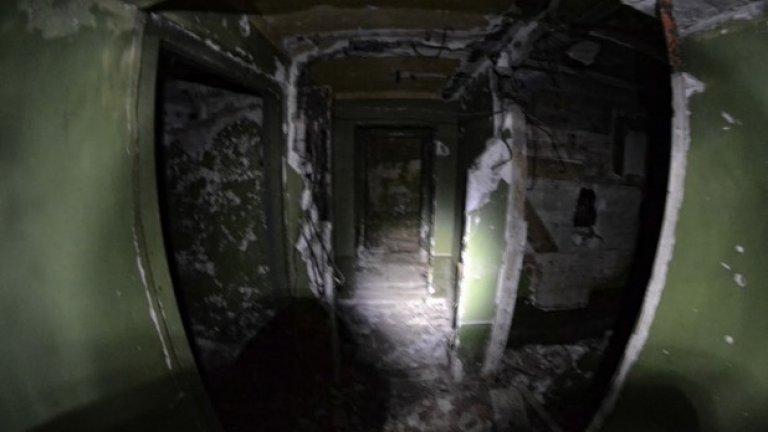 Подземната част на бункера представлява същински мрачен лабиринт. Слънчевата светлина не достига до това място, а многобройни гадинки са намерили убежище сред осеяните с разнообразни отломки помещения.