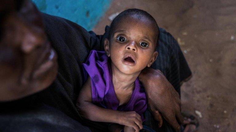 СЗО иска до 2030 г. да се ограничат с 90% смъртните случаи, причинени от болестта