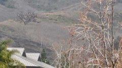 Според записите от контролната кула, пилотът на хеликоптера е бил предупреден, че лети на опасно ниска височина преди да се разбие в хълма край Лос Анджелис със скорост около 185 мили в час.