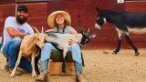Във фермата на Ронда и Травис има дори и магаре