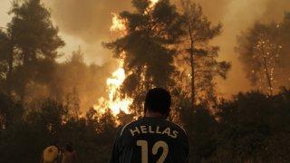 Огнената стихия бушува вече седмица