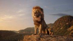 """Премиерата на новия """"Цар Лъв"""" у нас е на 19 юли."""