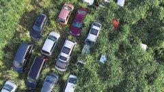Част от колите вече потъват под буйно образуващата се растителност