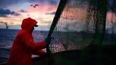 Когато няма риба в морето, туризмът пълни мрежите