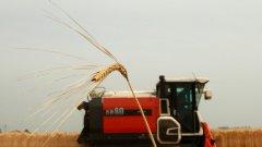 По подмярка 12.1 могат да бъдат подпомогнати финансово всички земеделски земи, които попадат в обхвата на защитените зони по Натура 2000.