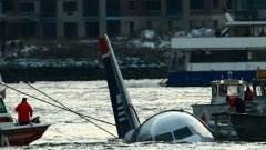 """Самолет на """"US Airways"""" се озова във водите на река Хъдсън през 2009 г. след като малко след излитането ято гъски повреди двигателите му. Инциденти като този ежегодно нанасят щети за 1,2 милиарда долара."""