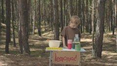 Или как се прави успешна реклама с дете и борова гора