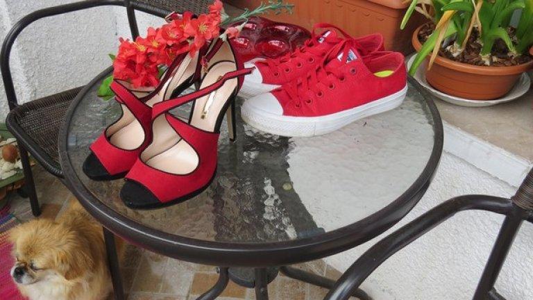 Ако сте жена, може да сте сигурна, че превъзхождат най-секси червените ви обувки с токчета. По много показатели, най-важният от които е снижаването на риска от изкълчване на глезена
