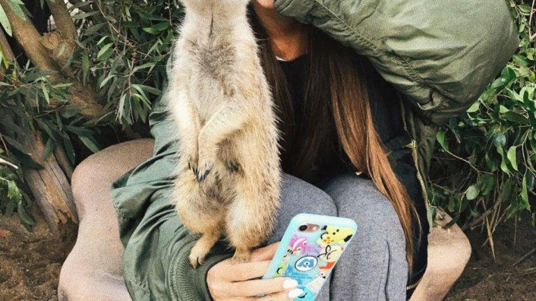 Ариана Гранде   Певицата изглежда си е създала няколко нови приятели, докато е била на посещение в зоологическата градина в Куинсланд.