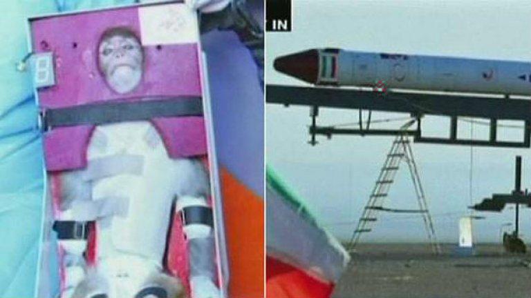 Маймуната и ракетата, с която тя се вдигна на 120 километра височина