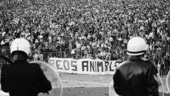 """""""Именно """"Хейзел"""" роди Висшата лига, тя е резултат от онази трагедия"""", твърди Роугън Тейлър, първият президент на Федерацията на футболните запалянковци."""