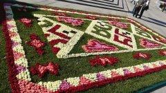 Килимът от български рози пред НДК