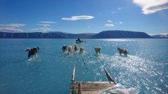Снимка на датски учен показва ефектите от климатичните промени