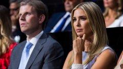 Дъщерята на американския държавен глава Иванка Тръмп и съпругът й Джаред Къшнър имат активи на стойност между 240 млн. долара и 740 млн. долара.