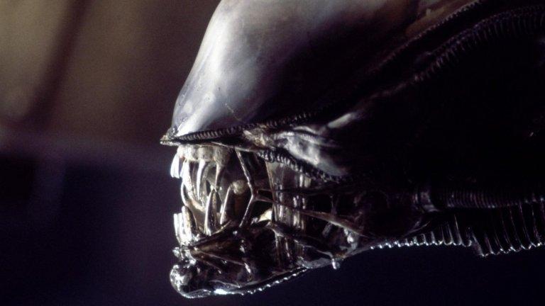 """Alien (""""Пришълецът"""")  Защо да не погледате и малко страховита фантастика? Може дори да се направи паралел между истинските вируси и това как страховитите ксеноморфи се развиват чрез човешки тела. Добрата новина? И двете могат да бъдат победени.   Фокусирайте се върху оригиналния Alien (1979 г.), Aliens (1986 г.), Alien 3 (1992 г.) и Alien Resurrection (1997 г.). След като сте преминали през историята на Рипли (Сигърни Уивър) и борбата й с извънземните чудовища, върнете се в миналото и се запознайте с предисторията чрез """"Прометей"""" (Prometheus, 2012 г.) и """"Пришълецът: Заветът"""" (Alien: Covenant, 2017 г.).  Тук правим една уговорка и тя е да не гледате двата филма """"Пришълецът срещу Хищника"""" (2004 и 2007 г.), защото това, за съжаление, ще е по-скоро загуба на време."""