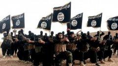 Джихадисти, неонацисти, анархисти - радикалните екстремисти имат какво да спечелят от коронавируса